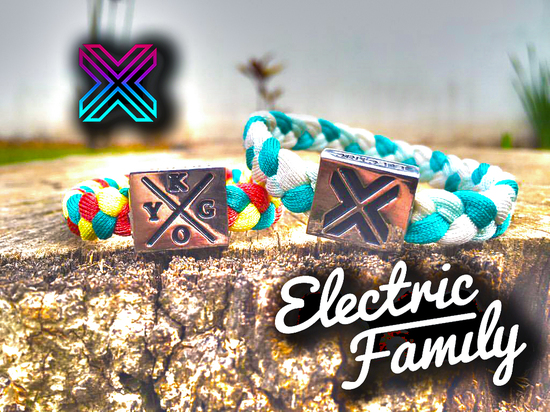 electricfamily_djhacks